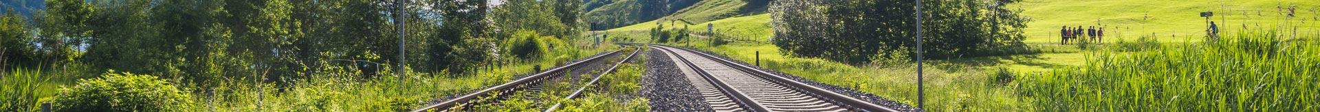 2 Gleise in grüner Landschaft